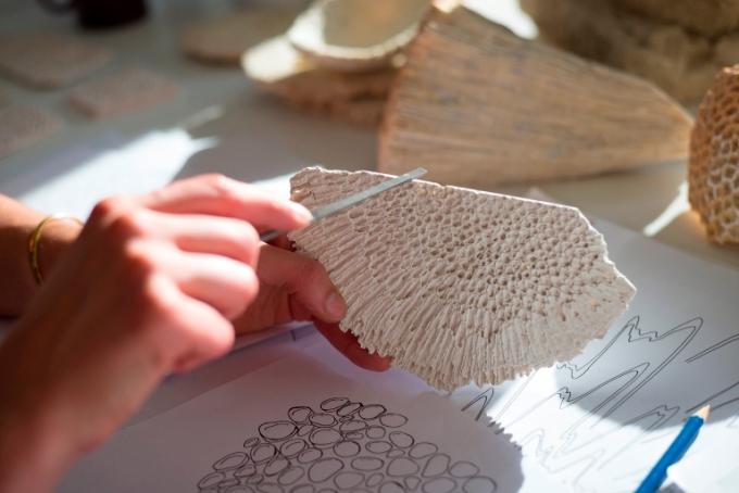 coral, wall, building, construction, UAE, regional design, Zuleika Penniman, Tashkeel, Tanween, Design Days Dubai