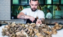 Shuck oysters at The Main